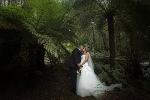 Wedding Photography in a rainforest setting inthe Yarra Valley Melbourne