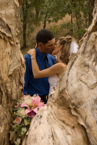 Wedding Photo with bridal couple framed by paperbark tree