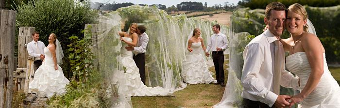 pier 10 vineyard wedding photo montage