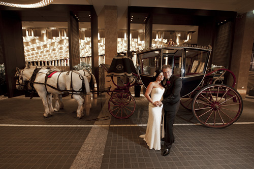 wedding photographer image of newlyweds with horse and carriage melbourne