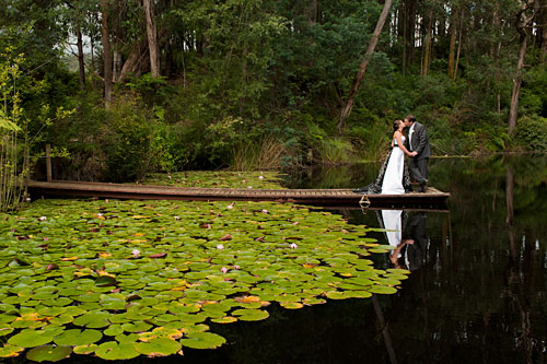 Wedding Photography at forest edge in Gembrook, in the heart of Melbourne's Yarra Ranges.
